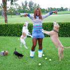 Seen here playing with her two dogs, Bambi and Jackie, Serena struggled through 2005 as a variety of injuries caused her to have her first non-Top 10 finish since 1998.