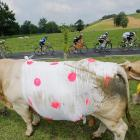 Fun fact: The best climber in the famed cycling race's eighteenth stage in the Pyrenees region gets to wear the polka dotted jersey.