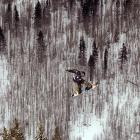 Finnish Peetu Piiroinen flies above Copper Mountain, Colo., as he competes in the FIS Snowboard Slope Style World Cup finals at the U.S. Grand Prix on Jan. 11. Piiroinen's score of 78.2 took third at the competition as Chas Guldemond earned the victory with a score of 92.5.