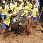 """Now <italics>that's</italics> a tackling drill. Jallikattu is """"an ancient heroic (we'll say!) sporting event of the Tamils played during the harvest festival and quite possibly the origin of the ancient expression """"taking the bull by the horns."""" Here's how it's done in Palamedu, India."""