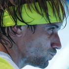 Ferrer reached his third straight Australian Open quarterfinal.