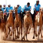 <bold>Fun Fact to Know & Tell:</bold> A pack of camels sells for about $8 in Abu Dhabi. Matches not included.