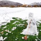 Notables such as Tiger Woods and Rory McIlroy saw their games go cold and were done in one round after a freak storm dumped two inches of snow at Dove Mountain in Marana, Arizona.