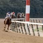 Secretariat won the race by 31 lengths.