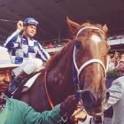Turcotte was jockey of the year in 1973. Sadly, he fell off a horse at Belmont in 1978 in an incident that left him a paraplegic.