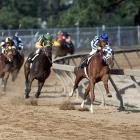 The order of finish at the Preakness was the same as at the Kentucky Derby.