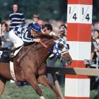 Secretariat won the Preakness by 2½ lengths.