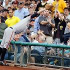 San Francisco Giants first baseman Brandon Belt stretches into the stands to catch a pop-up off the bat of the Pittsburgh Pirates' Pedro Alvarez in the second inning of an 8-2 Pirates win.