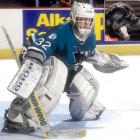 Goalie Arturs Irbe of the Sharks broke finger on his left hand, severed an artery and suffered nerve damage when he was bitten by Rambo, his Labrador-Newfoundland mix in July 1994.