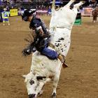 Jorey Markiss rides the bull Come Back on the second day of the Professional Bull Riders Buck Off.