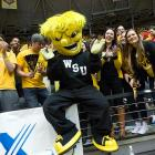 """No other college mascot is supposed to represent """"a big, bad, muscle-bound bundle of wheat."""" Also, the official bio on Wichita State's site says WuShock has been """"kidnapped and kicked out of games, and even starred in a movie."""" So there's that."""