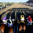 SI's best shots from the Belmont, where California Chrome failed in his bid to end the Triple Crown drought. Longshot Tonalist finished first, just ahead of another longshot, Commissioner. Medal Count placed third.