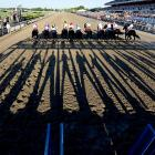 Belmont had its largest crowd in history for a race that was run with temperatures in the mid-80s.