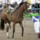 The three-year-old colt's bid for the Triple Crown was cut short in gruesome, heartbreaking fashion when he suffered a life-threatening injury -- breaking three bones above and below his right rear ankle -- at the start of the Preakness Stakes. Most horses are put down in such situations, but Barbaro's owners spared nothing to nurse him back to health and he is on the verge of leaving the hospital after seven months.