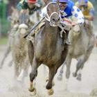 """SIMON SAYS:   """"Before the 2004 Kentucky Derby, there was a huge rainstorm--an absolute monsoon. It got to the point where it was just about survival and making sure the camera gear made it to the race. When you're on the final turn you don't know which of the 15-plus horses is going to win. So to pick out Smarty Jones--and then to have Smarty's jockey, Stewart Elliott, poke his head out from behind the horse--made surviving the rainstorm worth it.""""  Shot with a Canon EOS-1D Mark II, EF 600mm f/4L IS USM"""