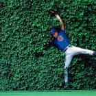 "I was fortunate to get Cubs outfielder Moises Alou making a catch in the ivy at Wrigley Field. To me the striking image invokes memories of the movie ""Field of Dreams."""
