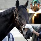 George Steinbrenner's colt was the 5-2 favorite heading into the race, but the Yankees boss couldn't reign in the trophy quite like he could in baseball. In the second-biggest upset in Churchill history, the 50-1 Giacomo (inset) took the victory by a half-length. Bellamy Road fell to seventh.