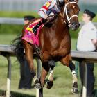 2008 Kentucky Derby winner Big Brown entered the Preakness as a heavy 1-2 favorite and didn't disappoint. The three-year-old stunned the field with a 5 1/4-length victory, and it looked like he could have won by much more.