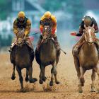 A 3-to-10  favorite after winning the Kentucky Derby, Fusaichi Pegasus (center) finished second to Red Bullet (right) in the Preakness.