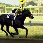 A 2-to-5 favorite, Seattle Slew won the Preakness on his way to winning the Triple Crown.