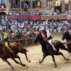 When it comes to watching livestock race through the streets of an ancient European city, this turf writer remains partial to the 90-second spectacle of the Palio di Siena. Twice a year, every July and August, the cobblestones of this Tuscan hill town's Piazza del Campo are covered with a thick layer of dirt, and its stone walls are layered with mattresses, so that 10 mixed-breed horses and their saddleless riders can compete for the honor of their respective Contrade (districts). Known to the locals as simply Il Palio, the race was first run in 1656 to celebrate an apparition of the Virgin Mary. I'm not going to pretend that I totally get the whole extravaganza. A good many of the thousands who crowd the Piazza seem just a teensy bit overwrought about a race run merely for district bragging rights. And the event itself isn't without a moderate amount of equine-on-human mayhem. But the Palio's peculiarities make me think that the only way to truly understand it is to experience one for myself.
