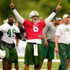 If Mark Sanchez' charisma and obvious abilities translate to the NFL, his impact on the Jets and Hispanic NFL fans could reach levels unseen since Fernando-mania in baseball. He has been preceded by some greats. <br>Among the most prominent: