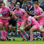 They're not quite pink elephants, but these guys at the Heineken Cup produced a sight to make you swear off the sauce. Bath was apparently disoriented by Stade Francais's uniforms and lost the rugby match 29-27 on Oct. 18.