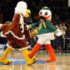 It was a standoff between birds before the Winthrop-Oregon basketball game in March 2007.  Winthrop's mascot, Big Stuff, should know better than to tangle with Puddles, who was suspended later that year for an altercation with Houston's mascot, Shasta.