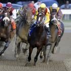 The 2009 Horse of the Year, Rachel Alexandra finished her career in 2010 with an impressive 13 victories in 19 starts. She became the first filly in 85 years to win the Preakness Stakes, beating out Kentucky Derby winner Mine That Bird. Rachel Alexandra is also believed to have been the first filly to ever pose in Vogue (2009).