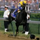 Finishing her career with 13 victories, Winning Colors is the most recent filly to have won the Kentucky Derby. She also claimed victories at the Grade 1 Santa Anita Derby and Santa Anita Oaks, all of which contributed to more than $1,500,000 in earnings. She was euthanized at the age 23 due to complications from colic.