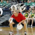 "This is what you call ""putting on the dog"" at the Fighting Irish vs. Cincinnati Bearcats hoops tilt in good old South Bend, Indiana."