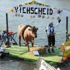 This participant in Neuburg an der Donau, Germany, had a beef as he made his way down the famous river.