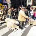 Well, it's not really English countryside. It's Noo Yawk's famed Times Square, where things got wooly while British farmers celebrated the launch of a brand new chapter in the popular social game that's shear delight.