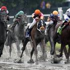 The much-hyped rubber match between Preakness Stakes winner Shackleford (right) and Kentucky Derby winner Animal Kingdom never developed. Shackleford finished fifth.