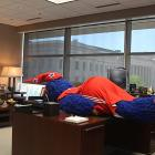"""Mascots can plank too, you know. The Wizards' furry friend, """"G-Wiz"""" proves it ... on his boss' desk. Wonder how Ted Leonsis feels about this ..."""