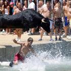 Pamplona has the running of the bulls, Denia has the diving of the bulls. According to the notes provided with this photograph, the beefy participants are returned to land by small boats -- very carefully, we would imagine.