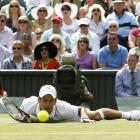 Novak Djokovic dives for a shot during his match against Jo-Wilfried Tsonga.