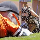 "The San Francisco Giants mascot got within sniffing distance of ""Giraffe Dog,"" the winner of the Giants Dog Contest before a game of rounders at AT&T Park in, of all places, San Francisco."