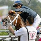 The winner of the 64th Running of the Personal Ensign Invitational at Saratoga Race Course was rewarded with a trip to the local Foam 'n Wash for a hot wax, an interior vacuuming and a ceremonial emptying of his ashtrays.
