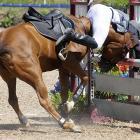 Eduardo Salas of Venezuela tries an unusual riding method during the modern pentathlon at the Pan American Games.
