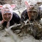 Slopping the pigs in Vienna (which, ominously, happens to be the home of Vienna sausages). A thousand competitors participated in the annual event consisting of a cross country run and an assault course of either 6.2 or 12.3 miles, we forget which.