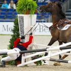 Cayetano Martinez de Irujo falls off his horse after a jumping mistake at the German Masters.
