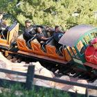 Continuing in our wildlife vein, we present Ducks (presumably unrelated to Donald) on Disneyland's Big Thunder Mountain Railroad mere days before the Rose Bowl.