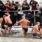 Onlookers watched Ukrainian Orthodox believers having an epiphany: that swimming in icy cold water near Kiev in January ain't all that pleasant and fat men shouldn't wear Speed-os, at least not in public.