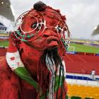 A demure, conservatively dressed Niger enthusiast at the Africa Cup of Nations Group C match against Morocco at the stade de l'Amitie in Libreville, Gabon.