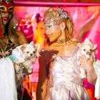 Ashley Alfonso (L), holding her Chihuahua Amazing Grace, and Summer Strand (R), holding her Chihuahua Daisy, participate in a wedding ceremony for the dogs at the pre-Westminster fashion show. Terrifying.