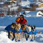 Paws in the action: Mitch Seavey and his pooch pack depart the Ruby, Alaska checkpoint.