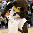 The Colorado Buffaloes mascot reacted to the news that local icon Tim Tebow had been traded to the Jets, who play in that den of iniquity otherwise known as the New York/New Jersey metropolitan area.