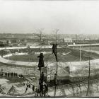 Fans are shown watching a Polo Grounds game from atop trees at Coogan's Bluff in this undated photo. Fans could watch for free from the bluff, which overlooked the stadium's final location on 155th Street and Eighth Avenue in Manhattan.