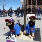 The dog days of the season are already here at Citi Field, home of the New York Mets.